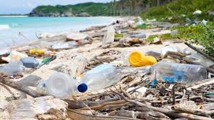Top tips to go single-use plastic free