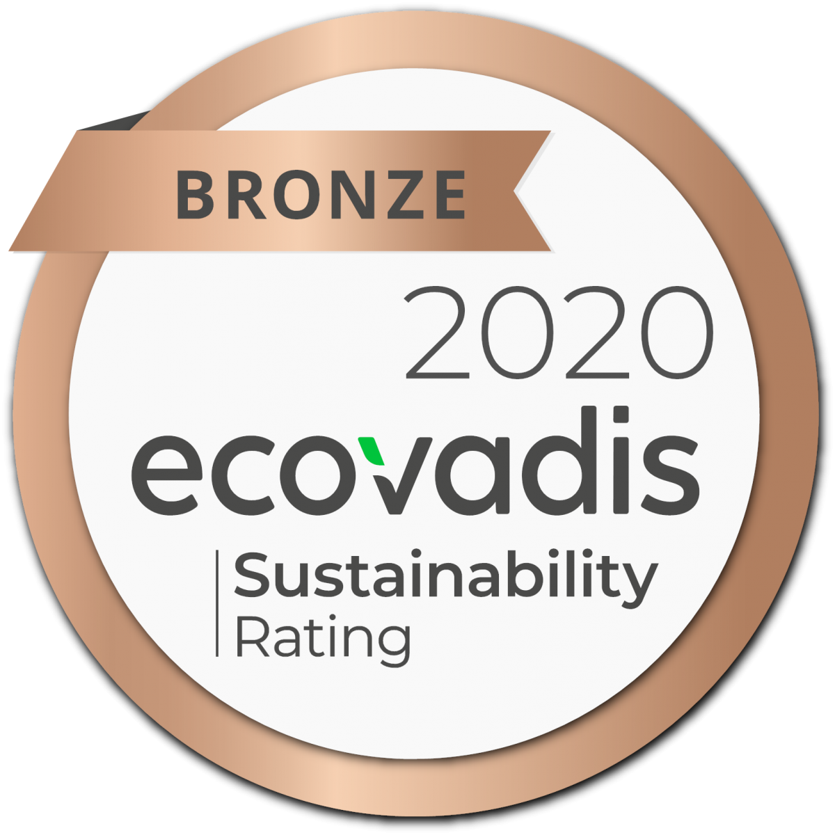 Why Ecovadis sustainability assessments matter?